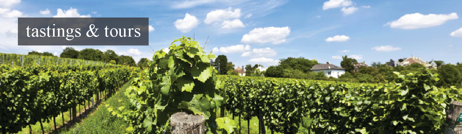 link to Victorianbourg Wine Estate's tastings & tours page